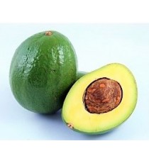 Avocat tropical République Dominicaine calibre 500-600g