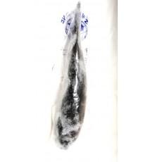 Poisson chat vidé congelé COCK BRAND - Prix au kg