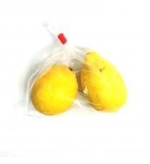 Sachet de 2 citrons jaunes