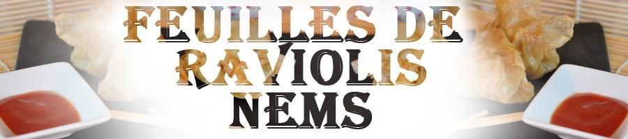 Feuilles Raviolis / Nems / Samoussas
